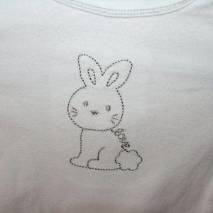 5/$20 Unisex bunny rabbit onesie 12 months